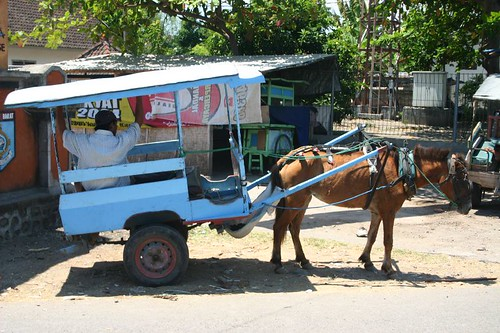 Horse cart on Gili T.