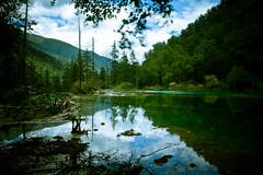 IMG_6265 (tomsstudio) Tags: china travel green water landscape jiuzhaigou 30d