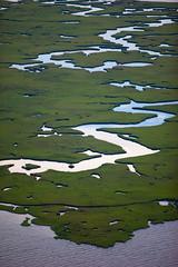 20100618-tedx-oil-spill-1875