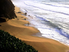 Footprints (Sandra_R) Tags: ocean light sea people plants santacruz brown green torresvedras praia beach portugal nature water colors beauty yellow outdoors photography spring interesting sand marine peace exterior natural footprints lifestyle foliage explore cruz simplicity magical stillness soe naturalworld sta lifesciences blueribbonwinner water supershot flickrsbest abigfave anawesomeshot impressedbeauty superbmasterpiece wowiekazowie diamondclassphotographer flickrdiamond boddies