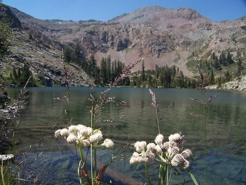 20080812 Alta Morris Lake