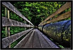 pipeline over a little bridge out of wood... (G.Hotz Photography (busy as a bee =)) Tags: wood bridge nature dornbirn natur brcke pipeline hdr schlucht austira vorarlberg rappenloch aplusphoto flickrgolfclub ondarena