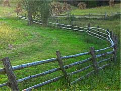 Fence's Slalom (ghostdog 17) Tags: nature fence landscape romania slalom themoulinrouge 25faves mywinners abigfave platinumphoto anawesomeshot megashot superhearts photofaceoffwinner platinumheartaward thegardenofzen theenchantedcarousel