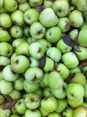 Apple 1