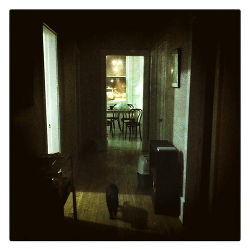 dark hall 2