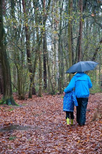 family blue trees fall rain forest umbrella walking geotagged kid woods child with boots hiking coat rubber grandad leafs emotions granpa impressedbeauty
