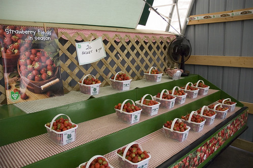 strawberries for sale!