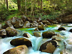 Water Melody (steve_steady64) Tags: wood longexposure italy green water rio gua ro forest river agua wasser stones flus creative steine melody bosque mystic