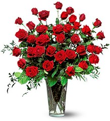 Discount Flower Delivery Detroit   3 Dozen Red...