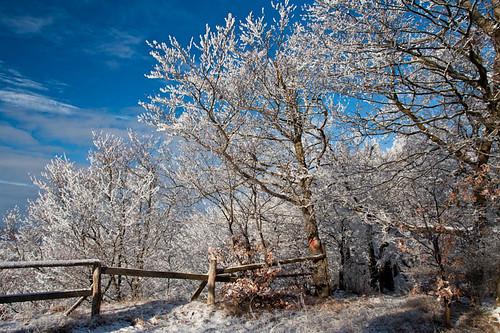 winterwanderung-5185