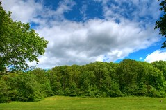 Babler State Park HDR 04
