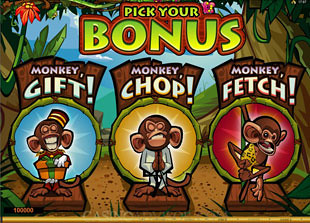 free Queen of the Jungle gamble bonus game