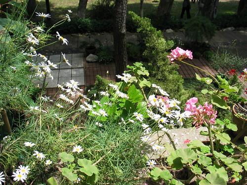 eames garden