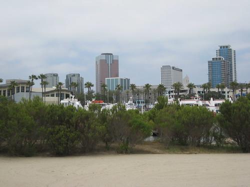 Skyline over dunes