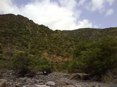 Beauty of Sheikh (Golis Range) (Cabdi) Tags: sheikh somaliland saaxil