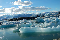 Ijsschotsen (boemlau) Tags: ice iceland jokulsarlon 2007 ijs ijsland ijsschotsen