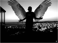 Angels are Falling..and I'm one of them (BlackHeart) Tags: true pain falling angels fallen dreams come