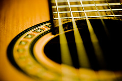 2009 Challenge 3/365 - Music (Loren Zemlicka) Tags: wood shadow music favorite macro canon butterfly neck circle dof hole guitar grain line depthoffield instrument acoustic 5d strings f28 etude canoneos5d flickrexplore canonef100mmf28macrousm lapatrie lorenzemlicka 2009challenge handmadeinquebeccanada