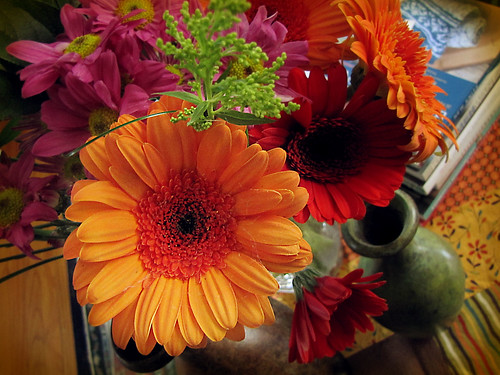 Gratitude Day 16: Gerbera Daisies on the coffee table