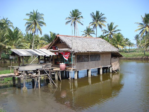 House on stilts. Central Java.