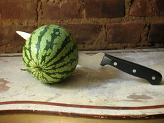 baby watermelon