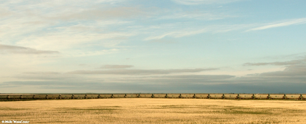 grain train on the plain