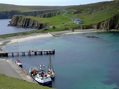"Fair isle North Haven (nz_willowherb) Tags: see scotland boat flickr tour vessel visit fairisle shetland stay goodshepherd birdobservatory to"" ""go stayinfairisle gotofairisle photosoffairisle visitshetland seeshetland goptoshetland visitfairisle"