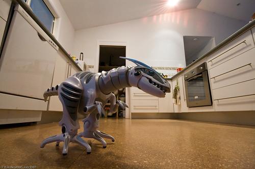 Robo-Raptor!