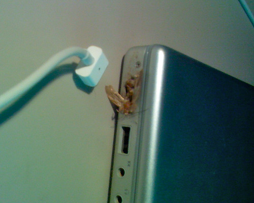 Catastrophic MagSafe Failure