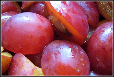 plums copy