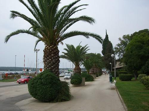 Kikötő Pulában