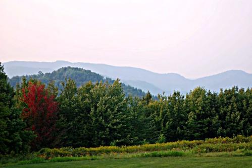 Vermont V 001