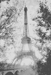 Multi Angles of Eiffel Tower (StephTan) Tags: travel paris france building architecture blurry object eiffeltower historical solid diamondclassphotographer