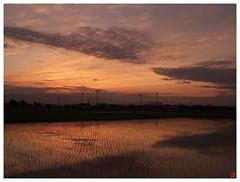 Evening Sky 070619 #01
