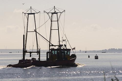 Gooimeer vissers