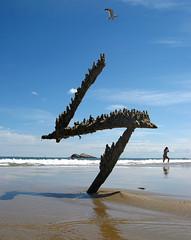 Z (sandcastlematt) Tags: shadow sculpture castle beach manchester sand seagull massachusetts drip z sandcastle sandsculpture manchesterbythesea thunderbolt bostonist singingbeach dripcastle interestingness36 universalhub dripsculpture shopofcuriosities