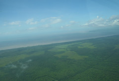Northern coast of Suriname