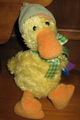 DuckBeanie_1155