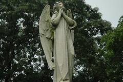 Greenwood Statue
