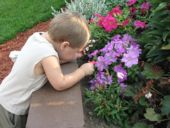 Matthew, pickin flowers