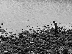 Mariscando (Caliaetu) Tags: sea blackandwhite bw españa costa fish blancoynegro beach coast mar fishing gijón asturias playa fisher pesca pescador asturies pedrero arbeyal northofspain sooc nortedeespaña caliaetu playadelarbeyal fernandotorrealonso
