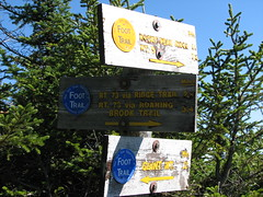 Giant and Rocky Peak sign Photo