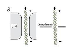 Nanoporo de grafeno