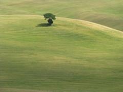 Toscana (gira_sole) Tags: italy italia tuscany toscana gmt włochy toskania abigfave platinumheartaward bestcapturesaoi doublyniceshot mygearandme mygearandmepremium mygearandmebronze artistoftheyearlevel3