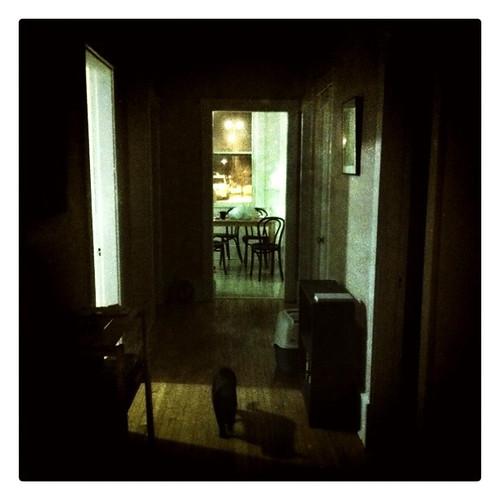 dark hall 3