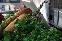 Bread & Herbs