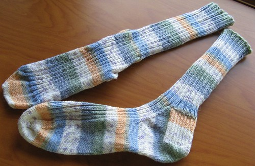 Austerman Step Ribbed Socks