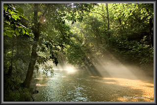 Morning light on the creek