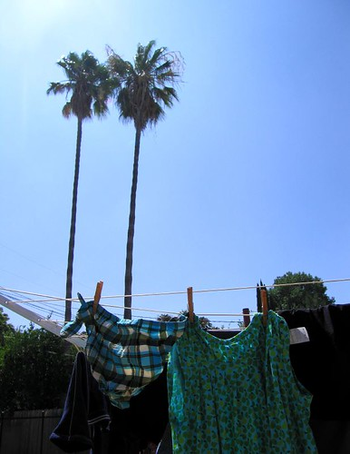 solar clothes drier