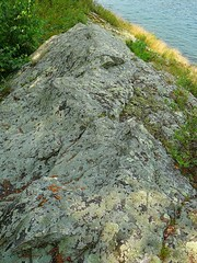 P1030509.jpg (airwaves1) Tags: 1000islands stlawrenceriver july282007 yeoisland